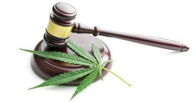 OUI_marijuana_law